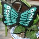 Green Butterfly Plant Poke
