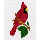 Cardinal Red Bird  Afghan Crochet Pattern Graph