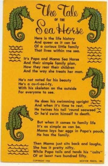 1955 The Tale of the Sea Horse Vintage Postcard Post card