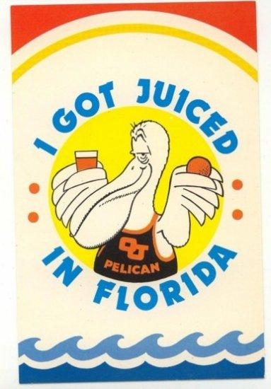 1983 I got Juiced in Florida OJ Pelican Comical Post card postcard