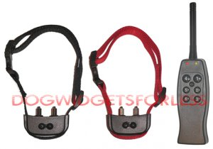 Rechargeable remote dog training shock collar for 2 dogs