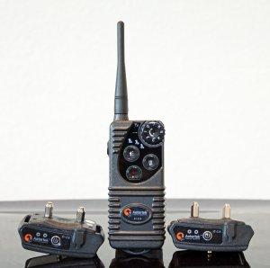 Aetertek 216S-550S Remote 2 Dog Training Shock Collar
