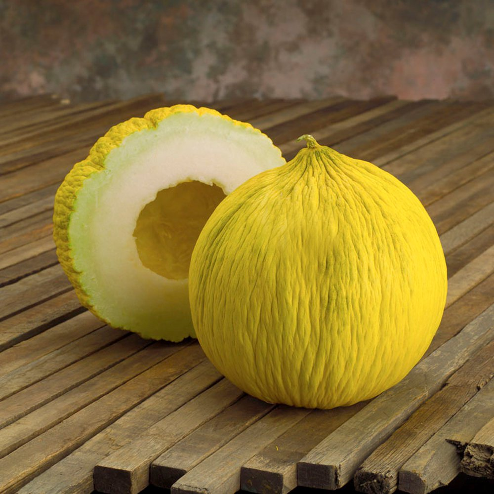 Melon Casaba Golden Beauty Cucumis melo - 25 Seeds