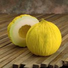 Melon Casaba Golden Beauty Cucumis melo - 25 Seeds