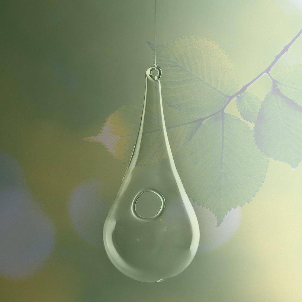Hanging Clear Glass Bud Vase Raindrop