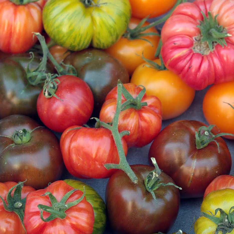 Sale 5 Varieties Organic Heirloom Tomato Seeds