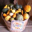 Ornamental Gourds 'Small Mixed' Lagenaria siceraria - 20 Seeds
