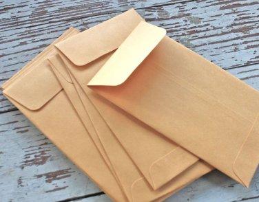 Plain Seed Saving Packets Manila Kraft Envelopes for Seeds 3 x 4.5 Inches - 20 Envelopes