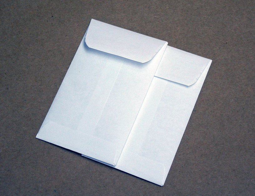 Plain Small Seed Saving Packets White Envelopes for Seeds 2.25 x 3.5 Inches - 20 Envelopes