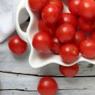 Organic Heirloom Tommy Toe Cherry Tomato Solanum lycopersicum - 35 Seeds