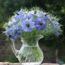 Nigella Persian Jewels Love in a Mist Nigella damascena - 100 Seeds