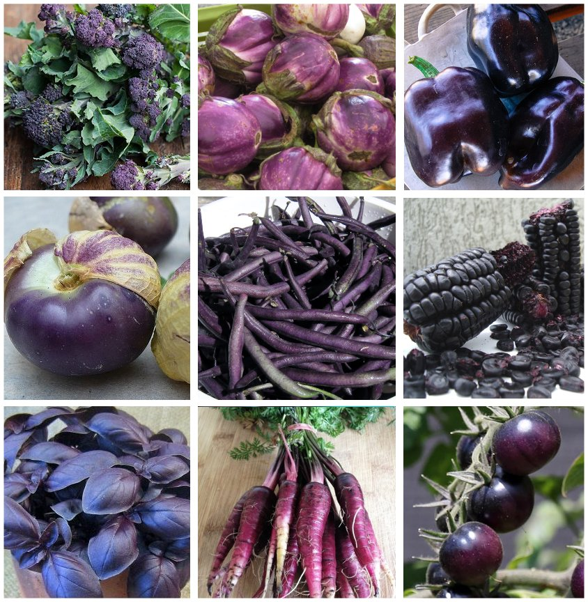 Power of Purple Organic Heirloom Vegetables Collection - 9 Varieties