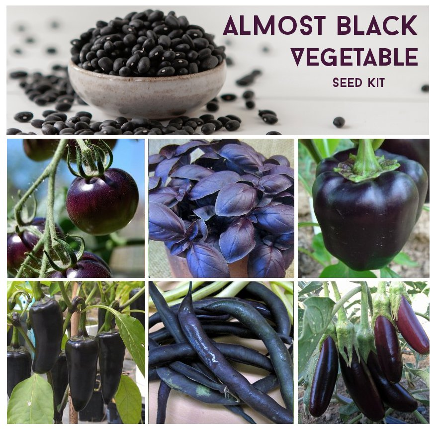 Organic Beauty Products >> Almost Black Heirloom Heritage Vegetable Seed Collection