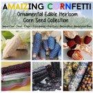 The Rare Heirloom Corn Zea Maize Gift Collection - 6 Varieties