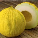 Asian Casaba Melon Cucumis melo - 25 Seeds
