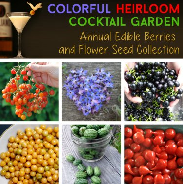 Colorful Annual Heirloom Cocktail Garden Seed Collection - 6 Varieties
