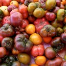Sale! Mixed Up Heirloom Tomato Seeds 2 for 1 - 50 Seeds