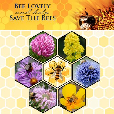 Bee Rescue Kit  - Feed the Bees Seed Gift in a Tin Box