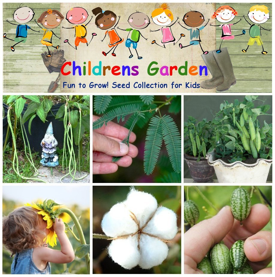 Children Garden - Science, Flowers and Vegetables � Seed Gift in a Tin Box