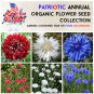 Red White and Blue Patriotic Annual Cornflower Seed Collection
