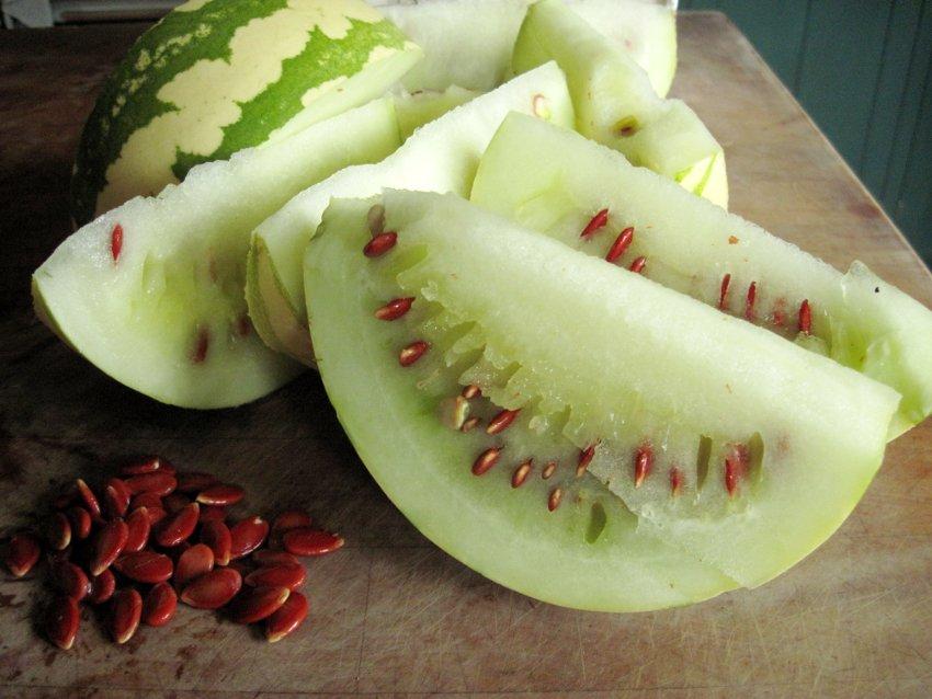 Rare! Heirloom Citron Melon Jam Melon Citrullus lanatus var. citroides - 15 Seeds