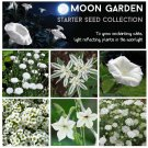 Moon Garden Starter White Flower Seed Collection 6 Varieties