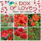 Box of Love Red Flower Seed Collection - 6 Varieties