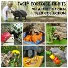 Tasty Pet Tortoise Tidbits Vegetable Garden Seed Collection - 6 Packets