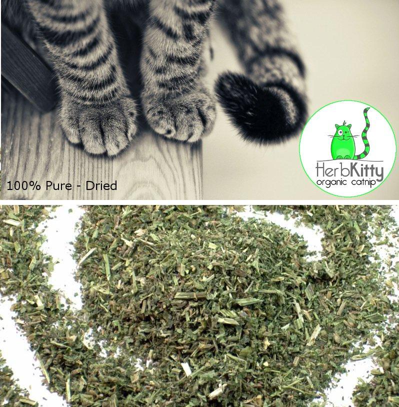Fresh Organic Loose Sun-Dried Catnip Nepeta Cataria - 4 OZ