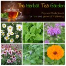 Herbal Tea Organic Garden Seed Collection for Tea - 6 Varieties