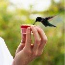 Personal Handheld Hummingbird Feeder
