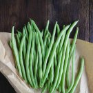 Bulk Heirloom Stringless Green Bush Beans Phaseolus vulgaris - 500 Seeds