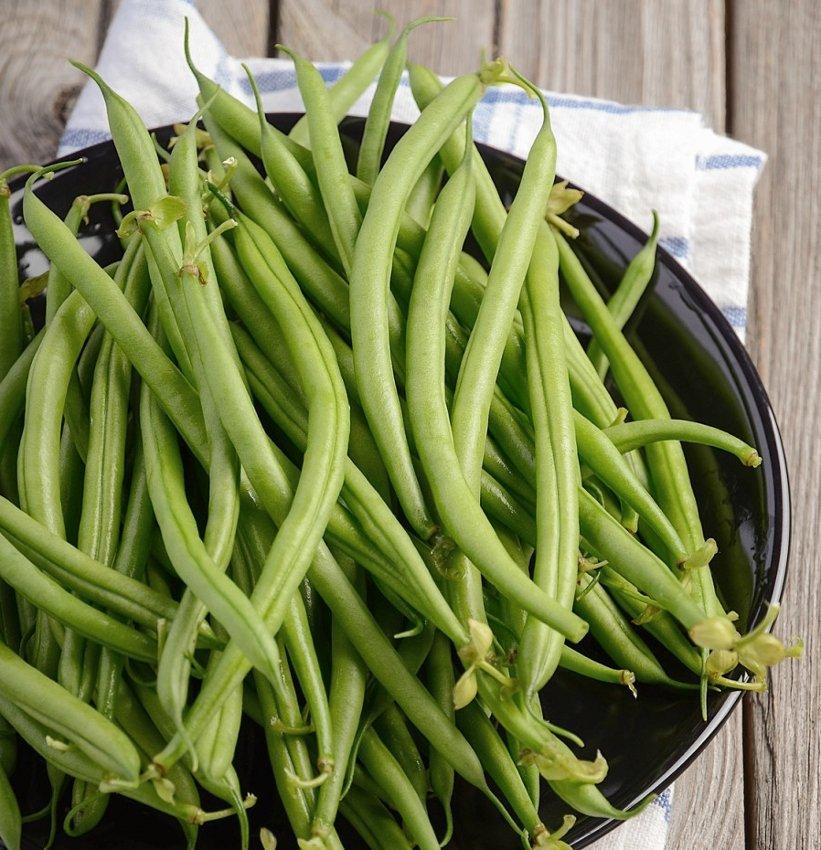 Heirloom Early Contender Green Bean Phaseolus vulgaris - 80 Seeds