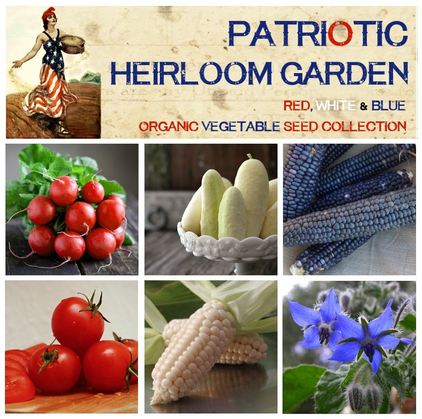 Patriotic Red White and Blue Heirloom Edibles Seed Collection - 6 Varieties