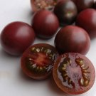 Black Cherry Tomato Heirloom Lycopersicon lycopersicum - 25 Seeds