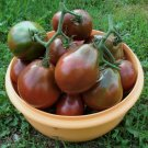 Heirloom Black Trifele Tomato Lycopersicon esculentum - 25 Seeds