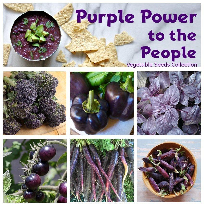 Purple Power to the People Superfood Heirloom OP Vegetable Seed Collection - 6 Varieties