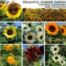 Unique Garden Sunflower Seed Collection - 6 Varieties