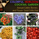 Colorful Organic Appetizer Cocktail Garden Seed Collection - 6 Varieties