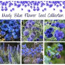 Calming Blue Shades Garden Flower Seed Gift Collection - 6 Varieties