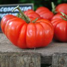 Italian Heirloom Pomodoro Costoluto Fiorentino Tomato Heirloom Lycopersicon lycopersicum - 20 Seeds