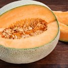 Hales Best Jumbo Cantaloupe Cucumis melo cantalupensis - 30 Seeds Fruits