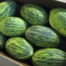 Spanish Heirloom Rock Melon Piel de Sapo Cucumis melo - 25 Seeds