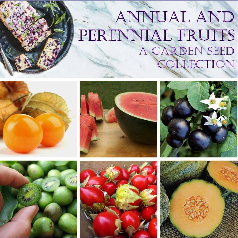Organic Perennial and Annual Fruit Garden Seed Collection - 6 Varieties