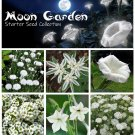 Moon Garden White Flower Seed Starter Collection 6 Varieties