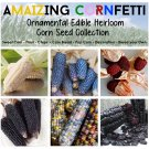 The Rare Heirloom Corn Zea Maize Seed Collection - 6 Varieties