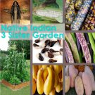 Native American Indian Heirloom Three Sister Garden Seed Collection -  6 Varieties