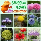 Whimsical Seuss Inspired Flower Seed Collection - 7 Varieties