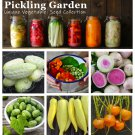 Pickling Garden Organic Vegetable Seed Collection - 6 Varieties