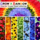 Rainbow Flower Garden Seed Gift Collection - 7 Varieties